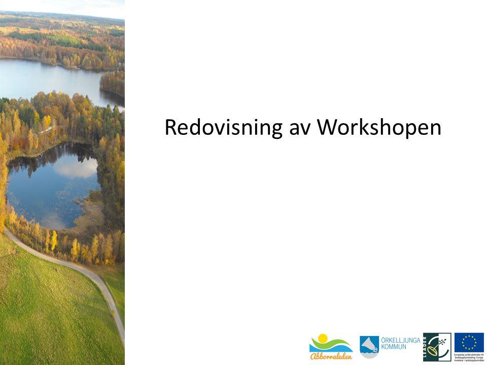 Redovisning av Workshopen
