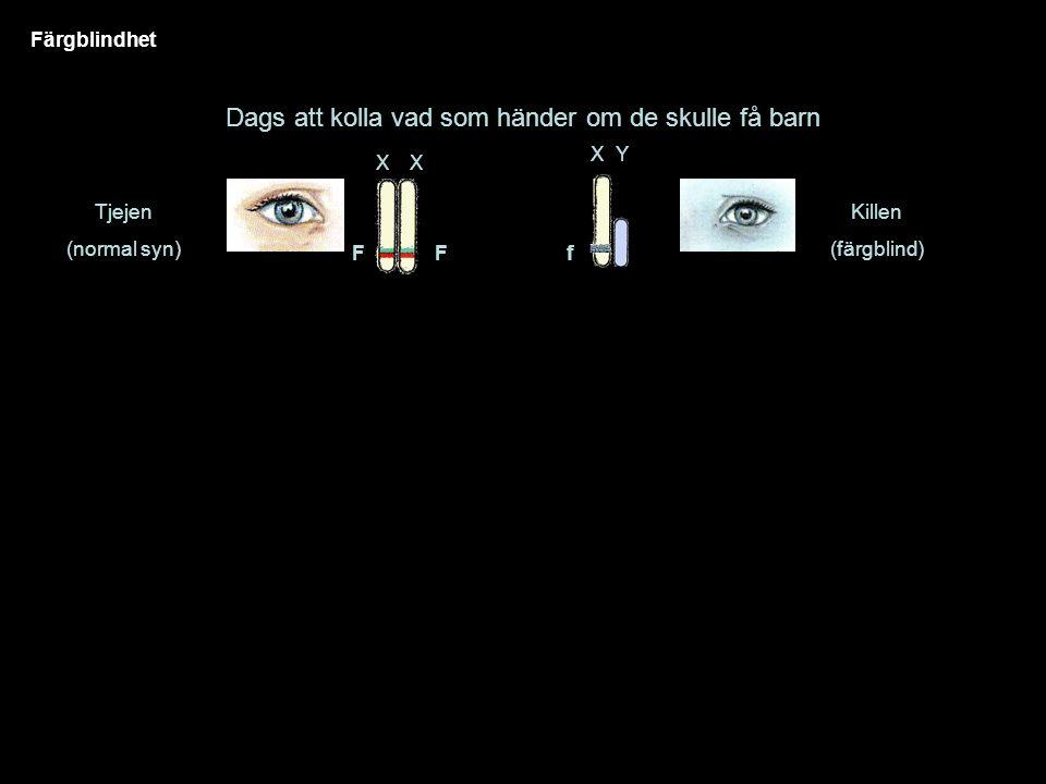 Färgblindhet Dags att kolla vad som händer om de skulle få barn Tjejen (normal syn) XX Killen (färgblind) FF XY f