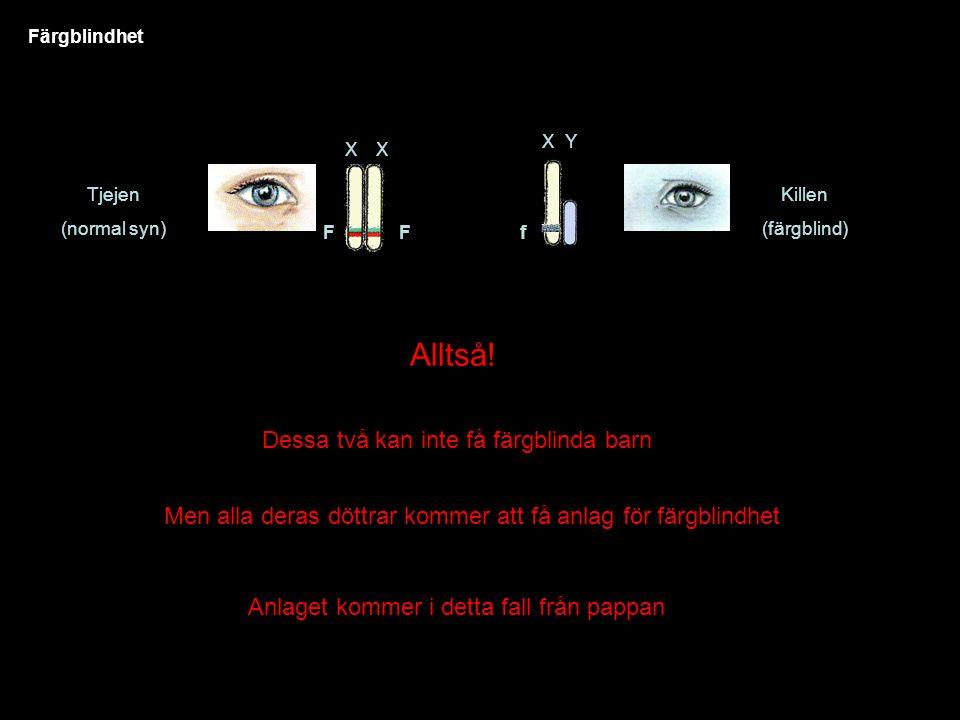 Färgblindhet Tjejen (normal syn) XX Killen (färgblind) FF XY f Alltså.