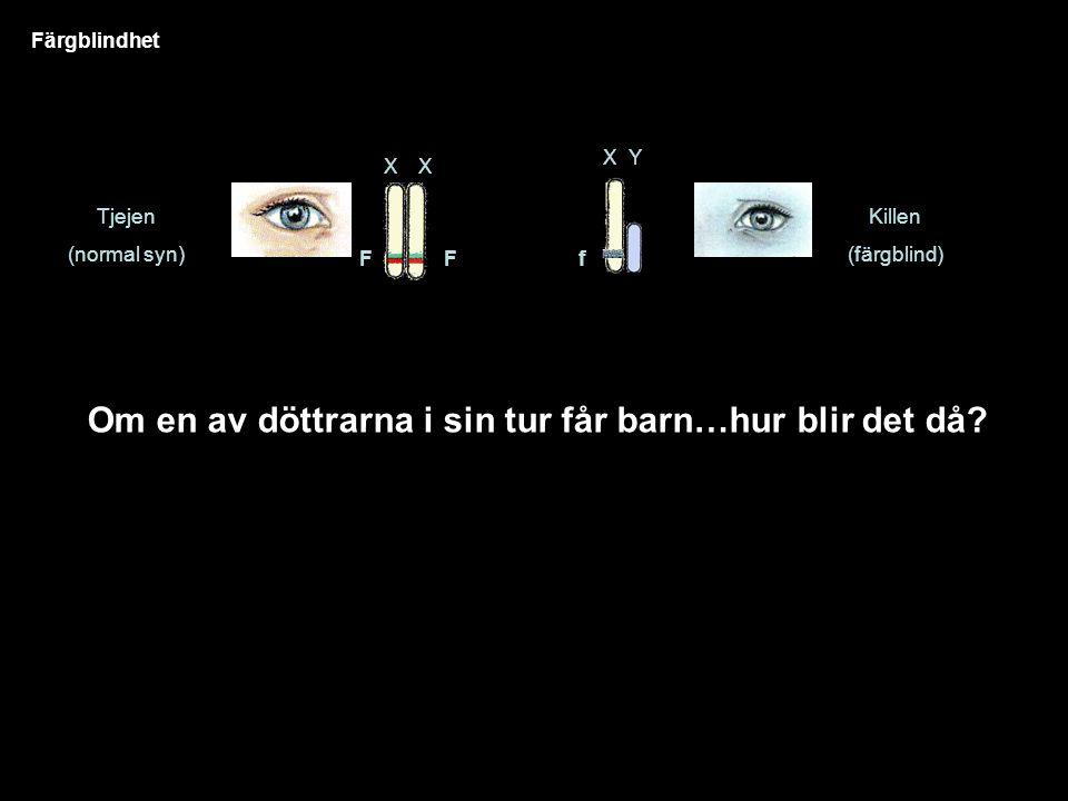 Färgblindhet Tjejen (normal syn) XX Killen (färgblind) FF XY f Om en av döttrarna i sin tur får barn…hur blir det då?