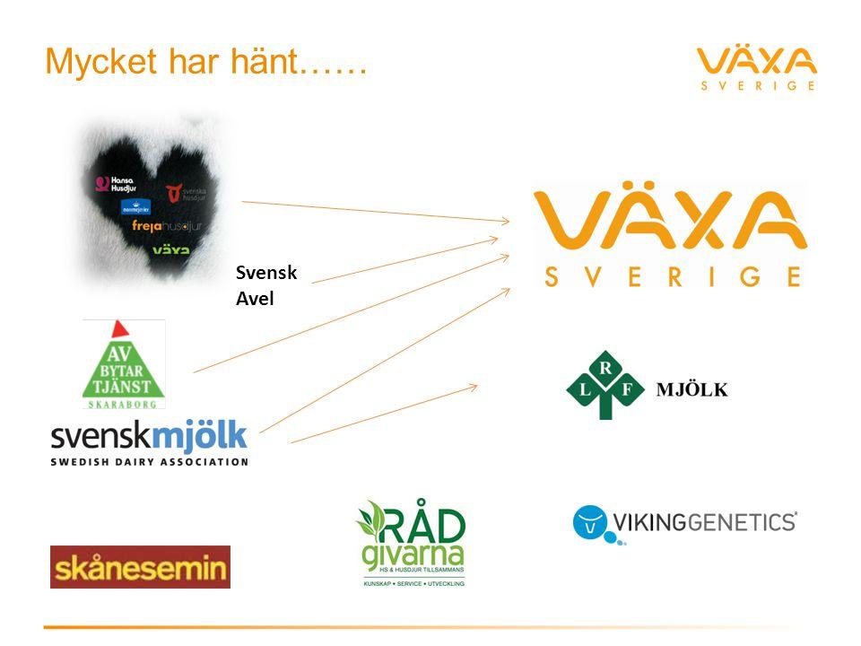 Servicepersonal internt/externt Specialister Produktionsrådgivare Veterinärer Husdjurstekniker Avbytare Växa Sverige ännu närmare dig Kunden