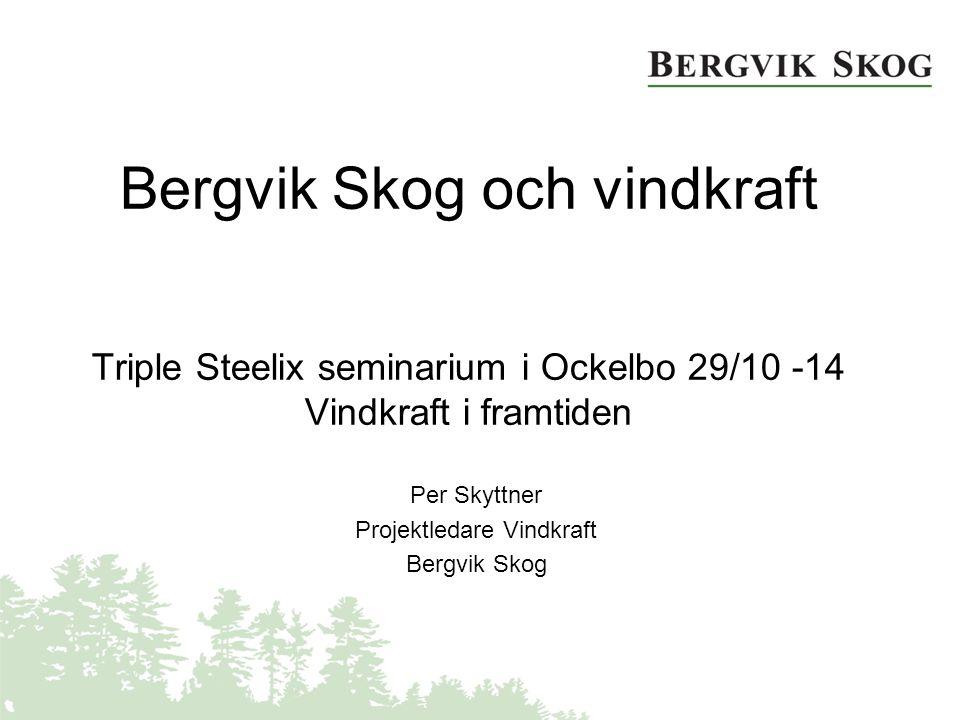Bergvik Skog och vindkraft Triple Steelix seminarium i Ockelbo 29/10 -14 Vindkraft i framtiden Per Skyttner Projektledare Vindkraft Bergvik Skog