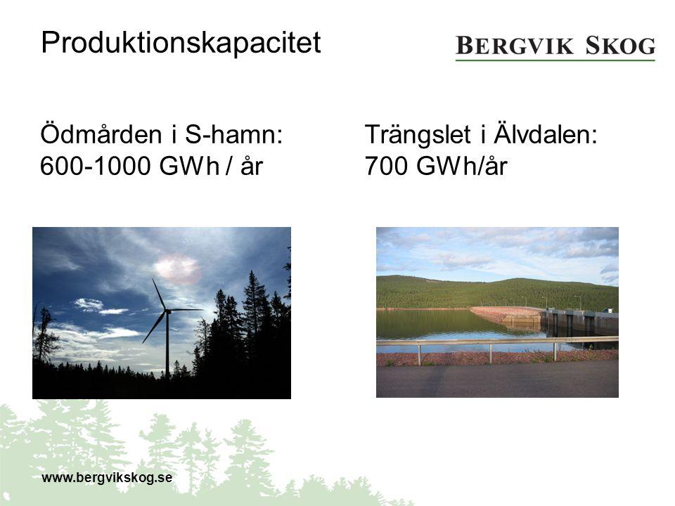 Produktionskapacitet Ödmården i S-hamn: 600-1000 GWh / år www.bergvikskog.se Trängslet i Älvdalen: 700 GWh/år