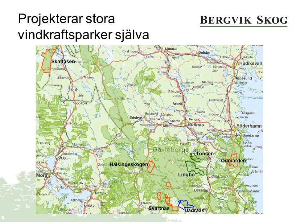 Egen projektering Miljötillstånd - lokalisering Nätanslutning Vindmätning Arrendeavtal www.bergvikskog.se