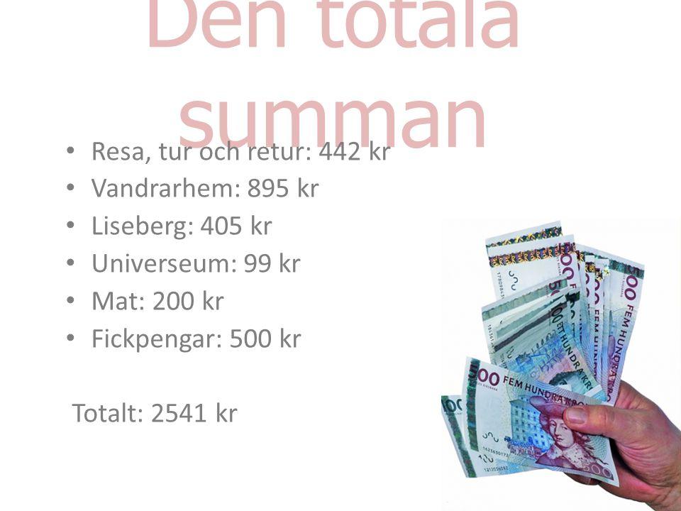 Den totala summan Resa, tur och retur: 442 kr Vandrarhem: 895 kr Liseberg: 405 kr Universeum: 99 kr Mat: 200 kr Fickpengar: 500 kr Totalt: 2541 kr