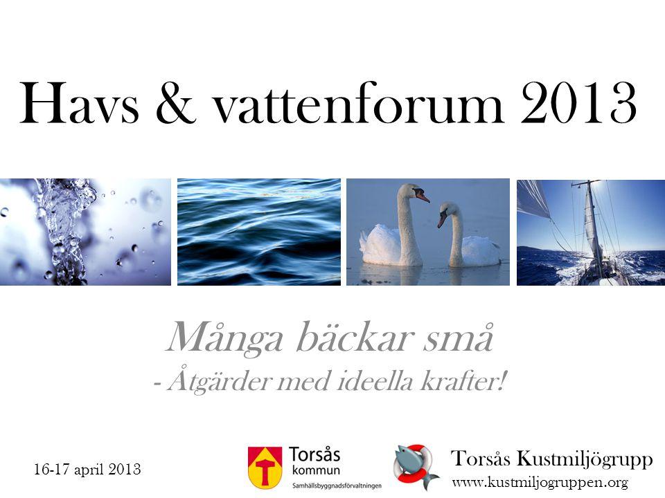 Havs & vattenforum 2013 Många bäckar små - Åtgärder med ideella krafter! Torsås Kustmiljögrupp www.kustmiljogruppen.org 16-17 april 2013