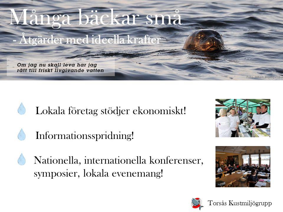Många bäckar små - Åtgärder med ideella krafter Informationsspridning! Nationella, internationella konferenser, symposier, lokala evenemang! Torsås Ku