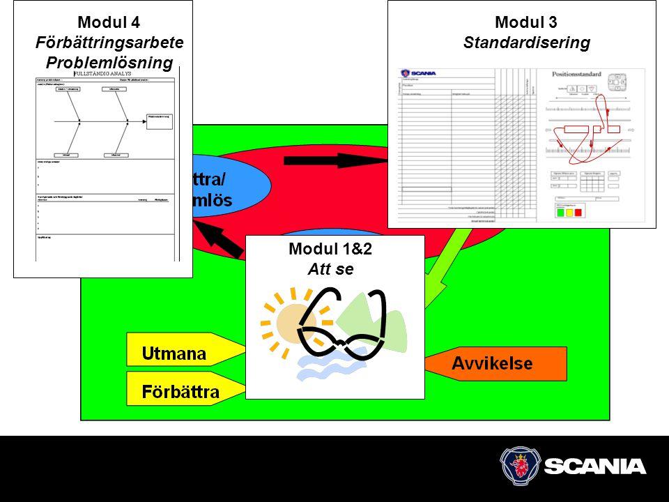 38 Modul 1&2 Att se Modul 4 Förbättringsarbete Problemlösning Modul 3 Standardisering