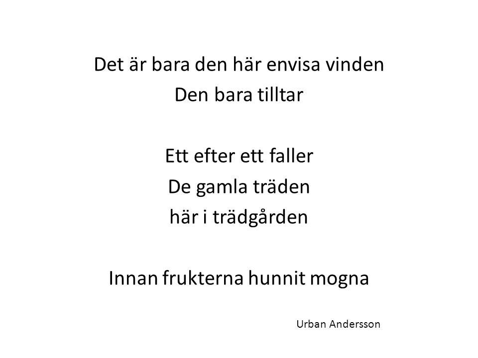 Det är bara den här envisa vinden Den bara tilltar Ett efter ett faller De gamla träden här i trädgården Innan frukterna hunnit mogna Urban Andersson