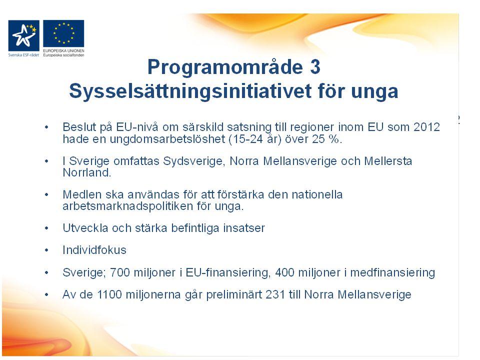 Programområde 3 Sysselsättningsinitiativet för unga Beslut på EU-nivå om särskild satsning till regioner inom EU som 2012 hade en ungdomsarbetslöshet (15-24 år) över 25 %.
