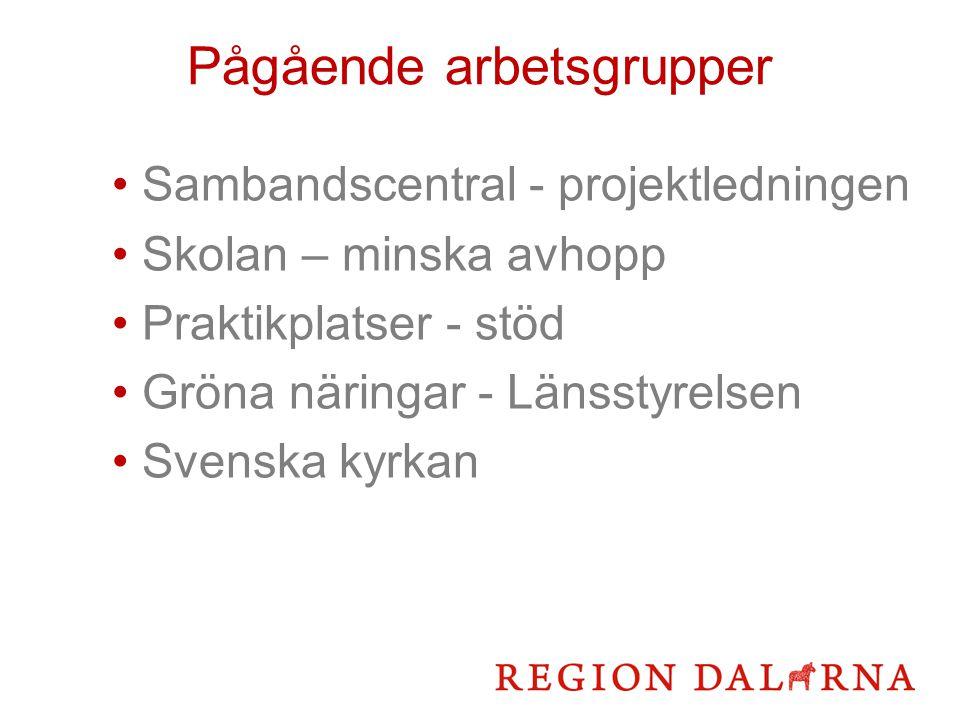 Pågående arbetsgrupper Sambandscentral - projektledningen Skolan – minska avhopp Praktikplatser - stöd Gröna näringar - Länsstyrelsen Svenska kyrkan
