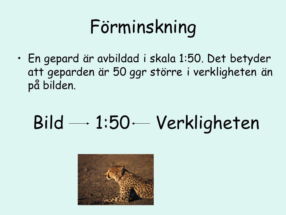 Förminskning En gepard är avbildad i skala 1:50. Det betyder att geparden är 50 ggr större i verkligheten än på bilden. Bild 1:50 Verkligheten