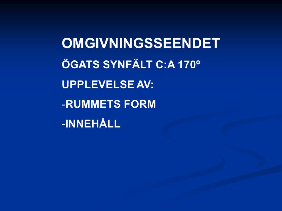 OMGIVNINGSSEENDET ÖGATS SYNFÄLT C:A 170º UPPLEVELSE AV: -RUMMETS FORM -INNEHÅLL