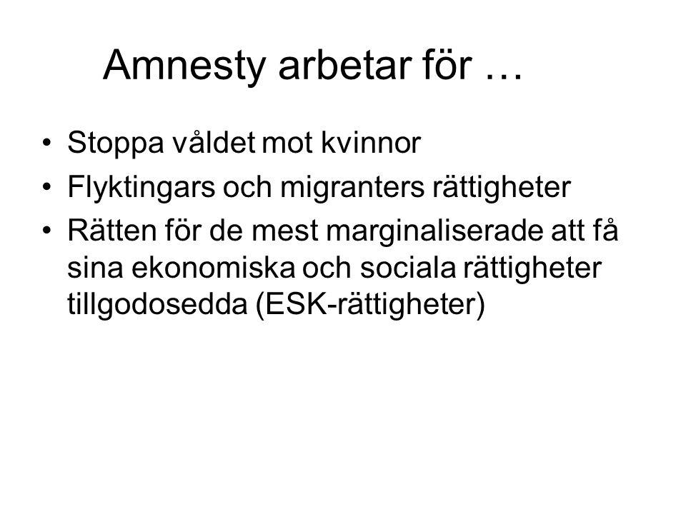 Amnesty arbetar för … Stoppa våldet mot kvinnor Flyktingars och migranters rättigheter Rätten för de mest marginaliserade att få sina ekonomiska och s