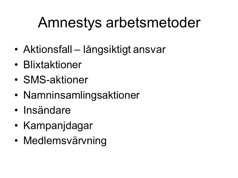 Amnestys arbetsmetoder Aktionsfall – långsiktigt ansvar Blixtaktioner SMS-aktioner Namninsamlingsaktioner Insändare Kampanjdagar Medlemsvärvning