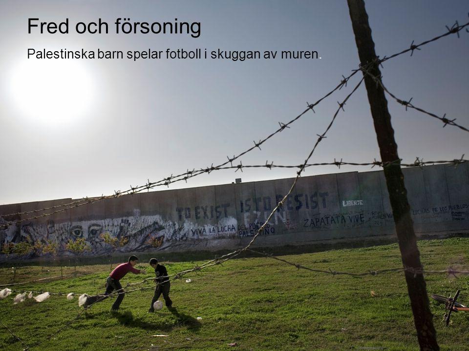 © Diakonia 14 Fred och försoning Palestinska barn spelar fotboll i skuggan av muren.