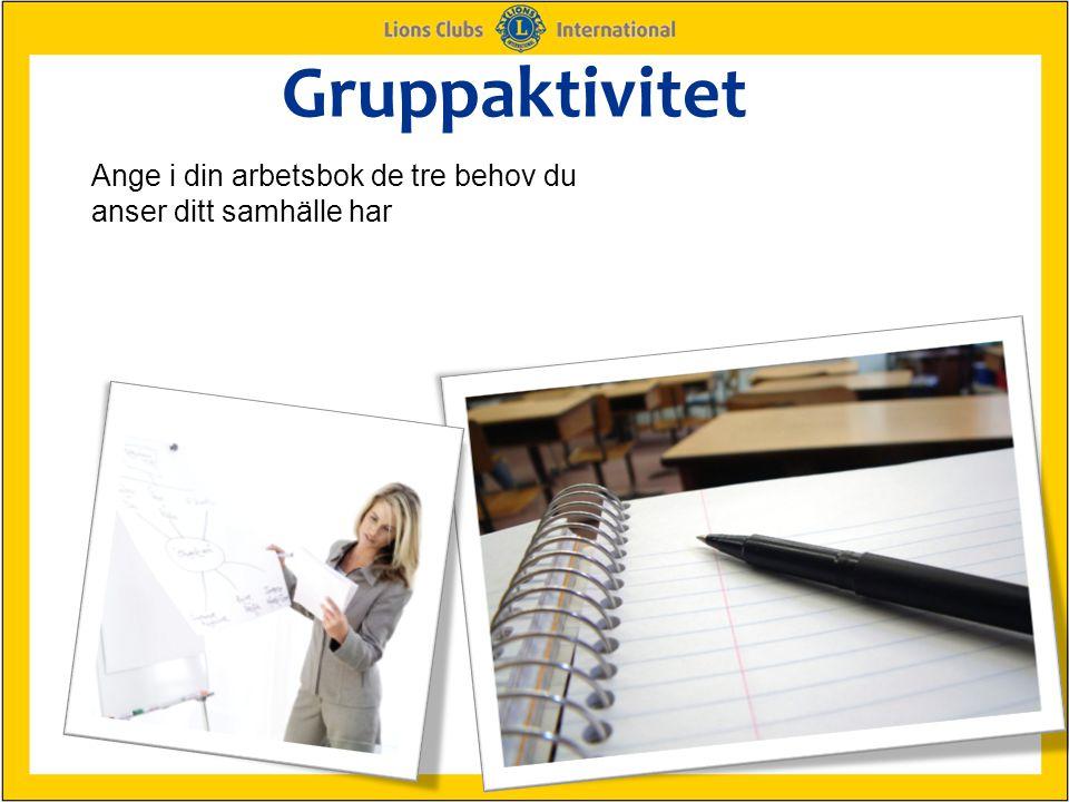 Gruppaktivitet Ange i din arbetsbok de tre behov du anser ditt samhälle har