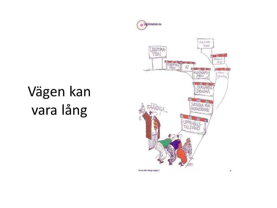 EU läkare Introduktionen på mycket låg nivå Kulturella skillnader Språkstöd Medicinalförfattnignar Mentorskap!