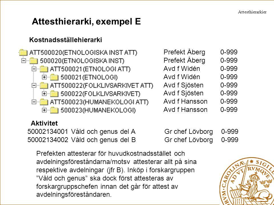 Attesthierarki, exempel E Kostnadsställehierarki Prefekt Åberg 0-999 Avd f Widén 0-999 Avd f Sjösten 0-999 Avd f Hansson 0-999 Aktivitet 50002134001 V