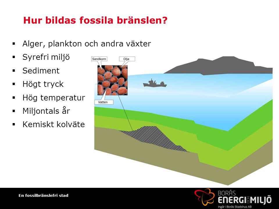 En fossilbränslefri stad Hur bildas fossila bränslen.
