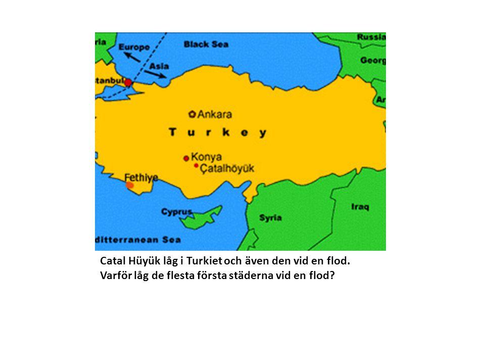 Catal Hüyük låg i Turkiet och även den vid en flod. Varför låg de flesta första städerna vid en flod?