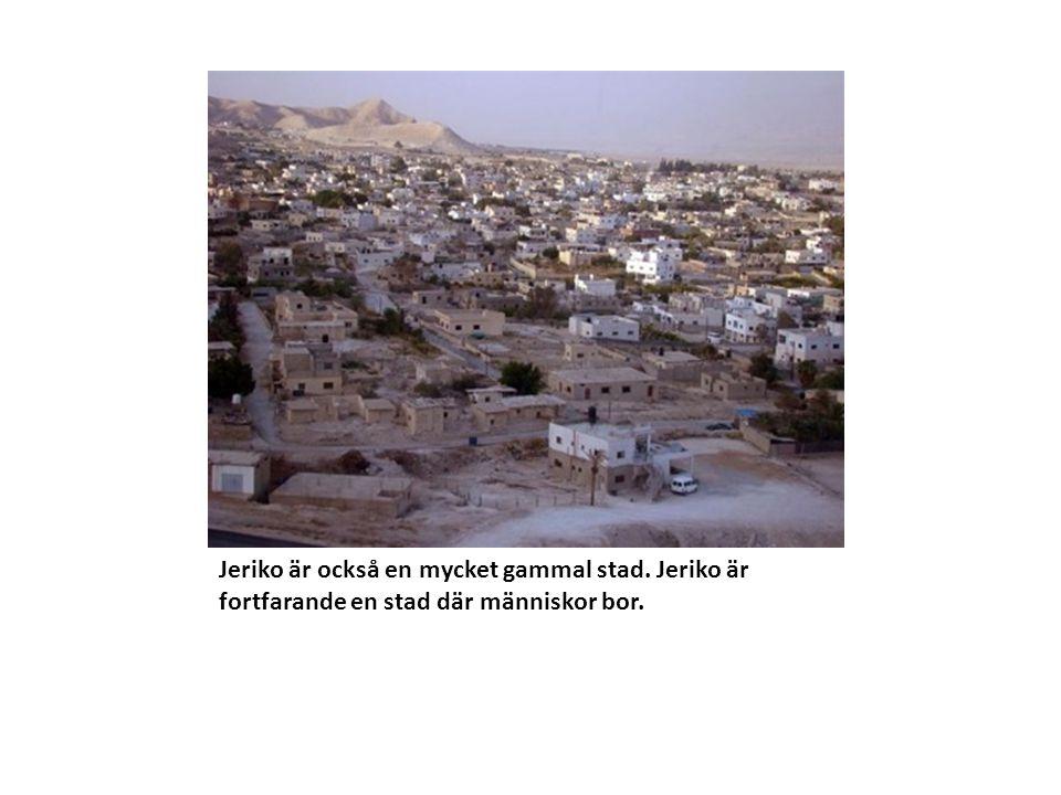 Jeriko är också en mycket gammal stad. Jeriko är fortfarande en stad där människor bor.