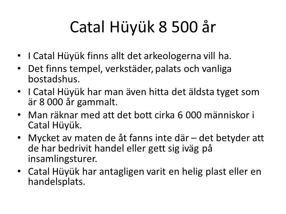 Catal Hüyük 8 500 år I Catal Hüyük finns allt det arkeologerna vill ha. Det finns tempel, verkstäder, palats och vanliga bostadshus. I Catal Hüyük har