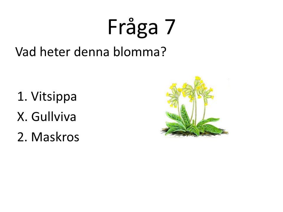 Fråga 8 1. Tjeckien X. Slovenien 2. Österrike Vilket är landet?