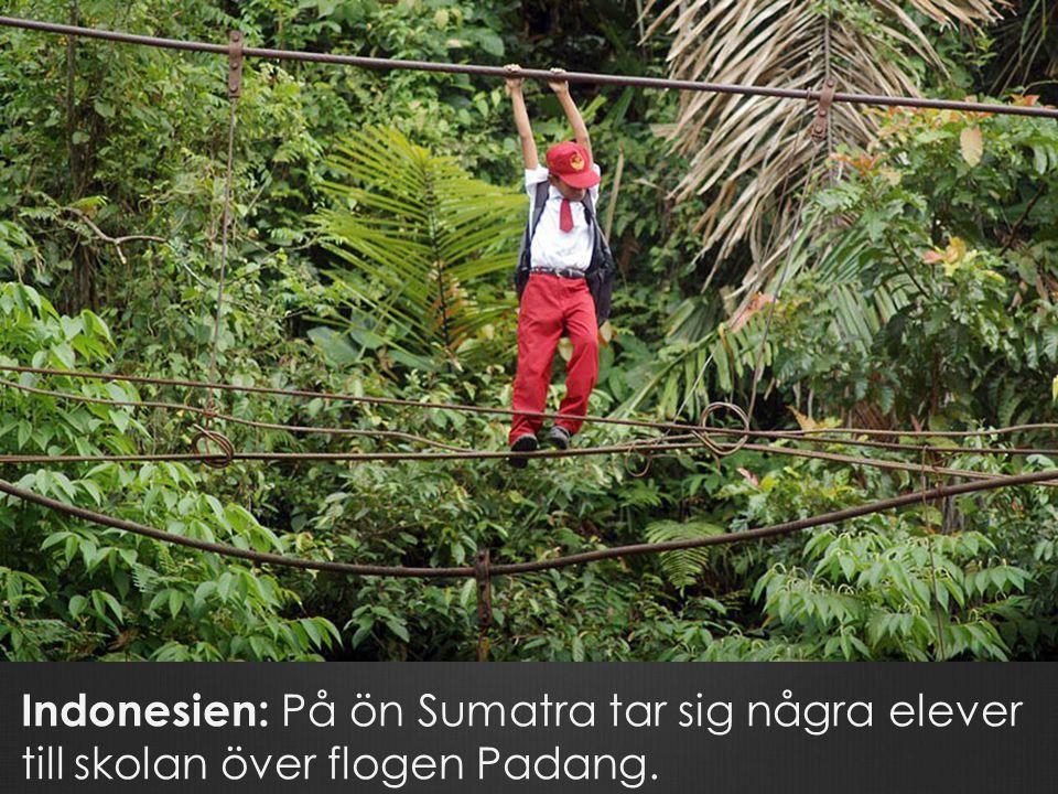 Indonesien: På ön Sumatra tar sig några elever till skolan över flogen Padang.