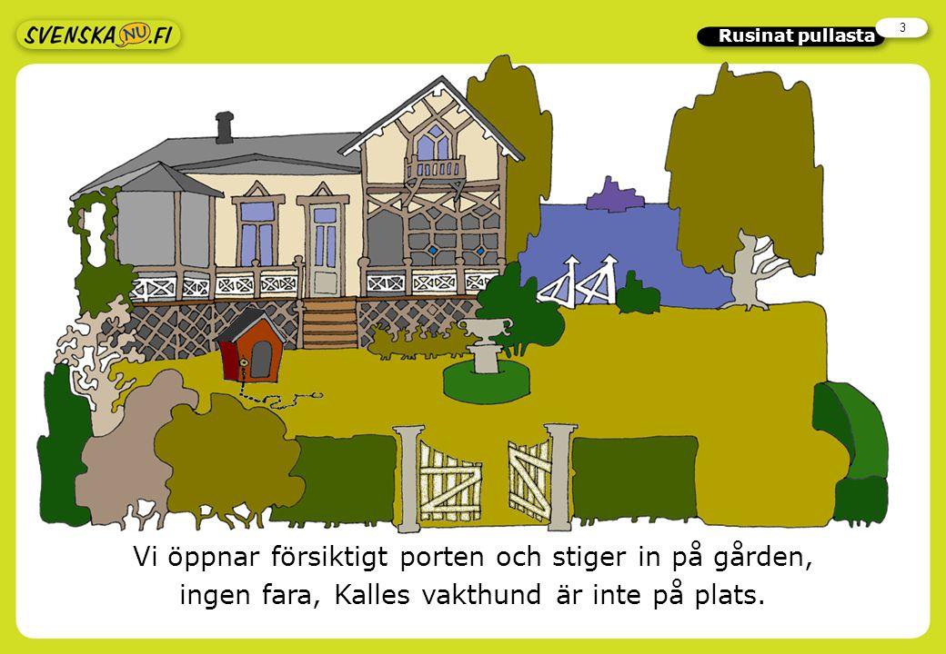 3 Rusinat pullasta Vi öppnar försiktigt porten och stiger in på gården, ingen fara, Kalles vakthund är inte på plats.