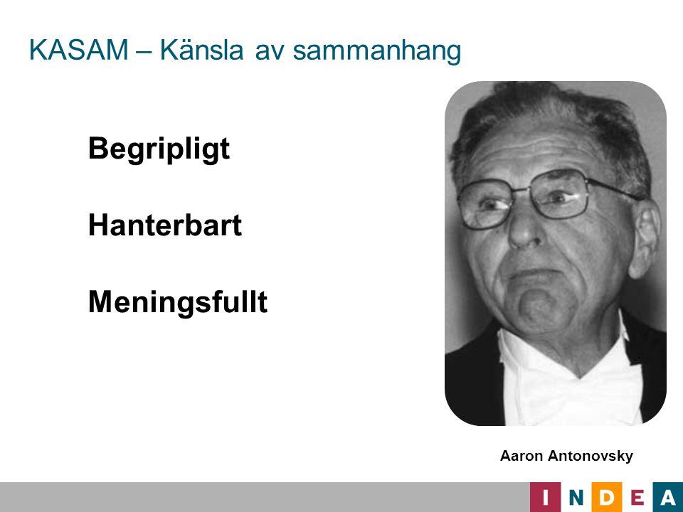 Svenskt ledarskap Chefens roll Chefen är mycket synlig och aktiv i planeringsfasen.