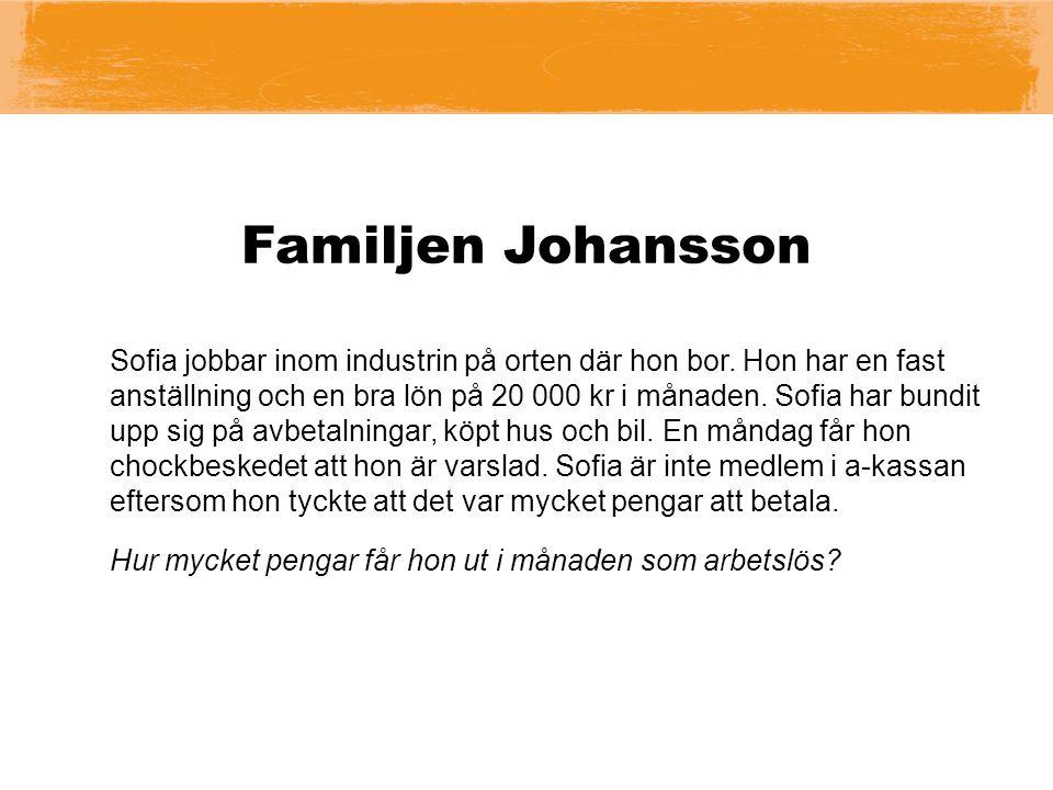 Familjen Johansson Sofia jobbar inom industrin på orten där hon bor.