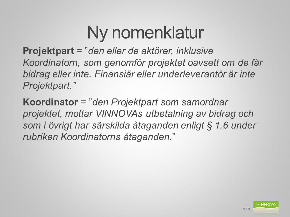 """Ny nomenklatur Projektpart = """"den eller de aktörer, inklusive Koordinatorn, som genomför projektet oavsett om de får bidrag eller inte. Finansiär elle"""