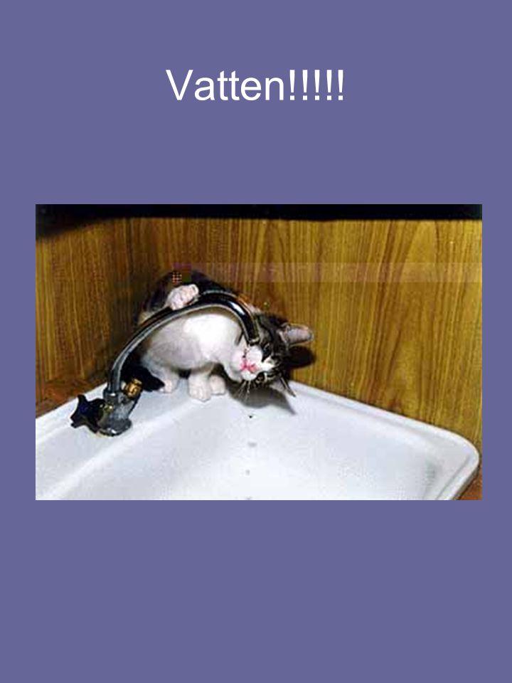 Vatten!!!!!