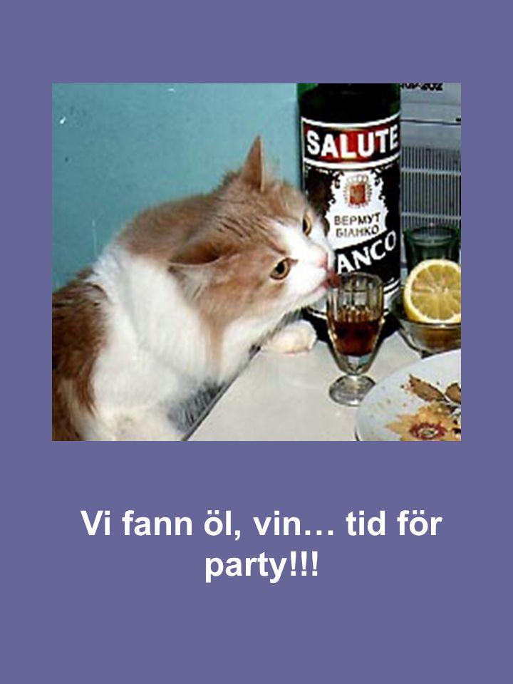 Vi fann öl, vin… tid för party!!!
