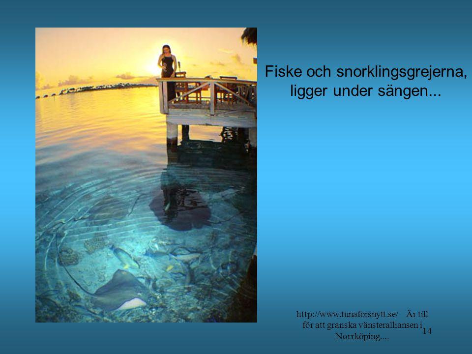 http://www.tunaforsnytt.se/ Är till för att granska vänsteralliansen i Norrköping.... 13