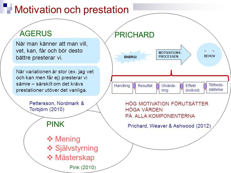 Motivation och prestation AGERUS När man känner att man vill, vet, kan, får och bör desto bättre presterar vi. PRICHARD Effekt (individ) Handling ENER