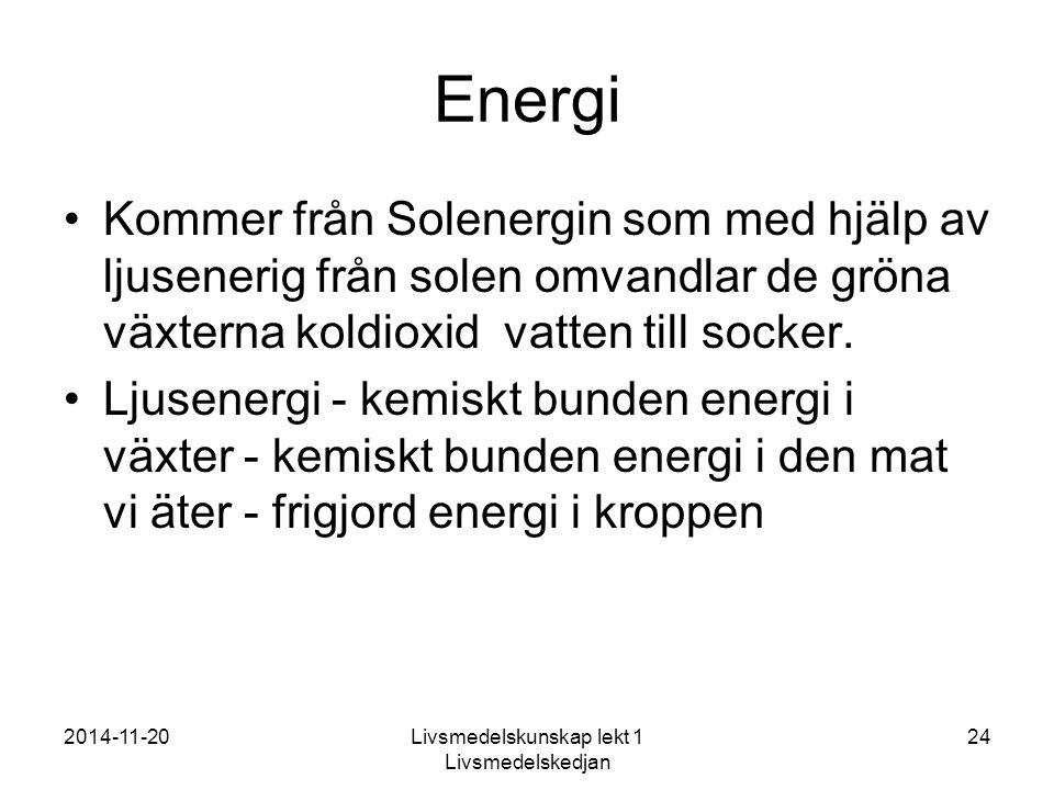 Energi Kommer från Solenergin som med hjälp av ljusenerig från solen omvandlar de gröna växterna koldioxid vatten till socker.