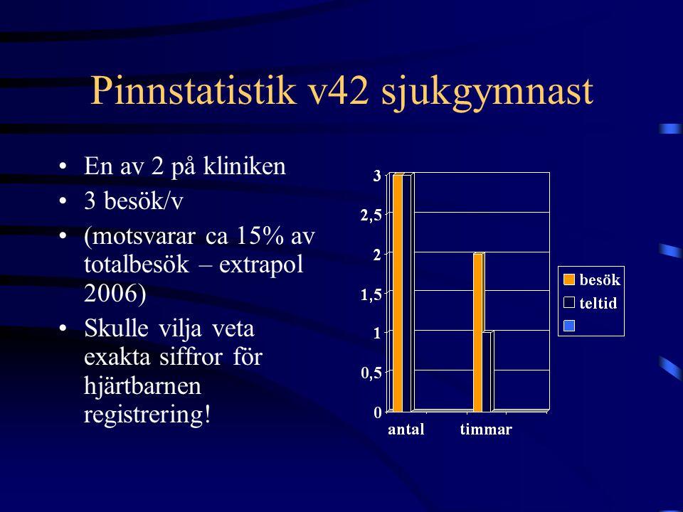Pinnstatistik v42 sjukgymnast En av 2 på kliniken 3 besök/v (motsvarar ca 15% av totalbesök – extrapol 2006) Skulle vilja veta exakta siffror för hjärtbarnen registrering!