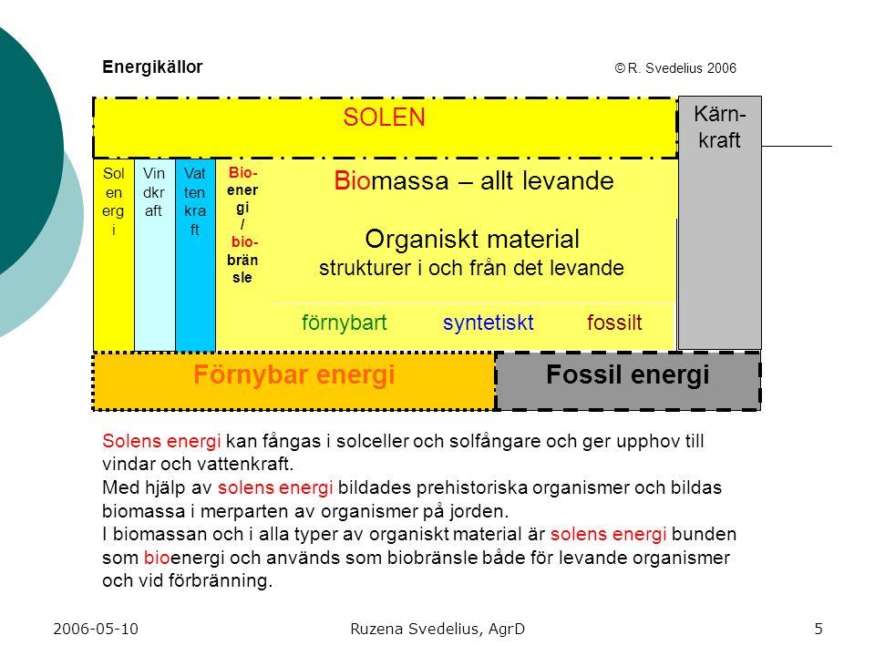 2006-05-10Ruzena Svedelius, AgrD5 Sol en erg i Vin dkr aft Biomassa – allt levande förnybartfossiltsyntetiskt Organiskt material strukturer i och från det levande Bio- ener gi / bio- brän sle Kärn- kraft Energikällor © R.