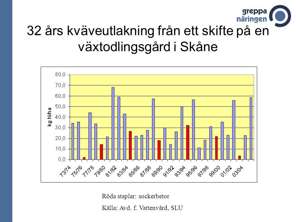 32 års kväveutlakning från ett skifte på en växtodlingsgård i Skåne Röda staplar: sockerbetor Källa: Avd.