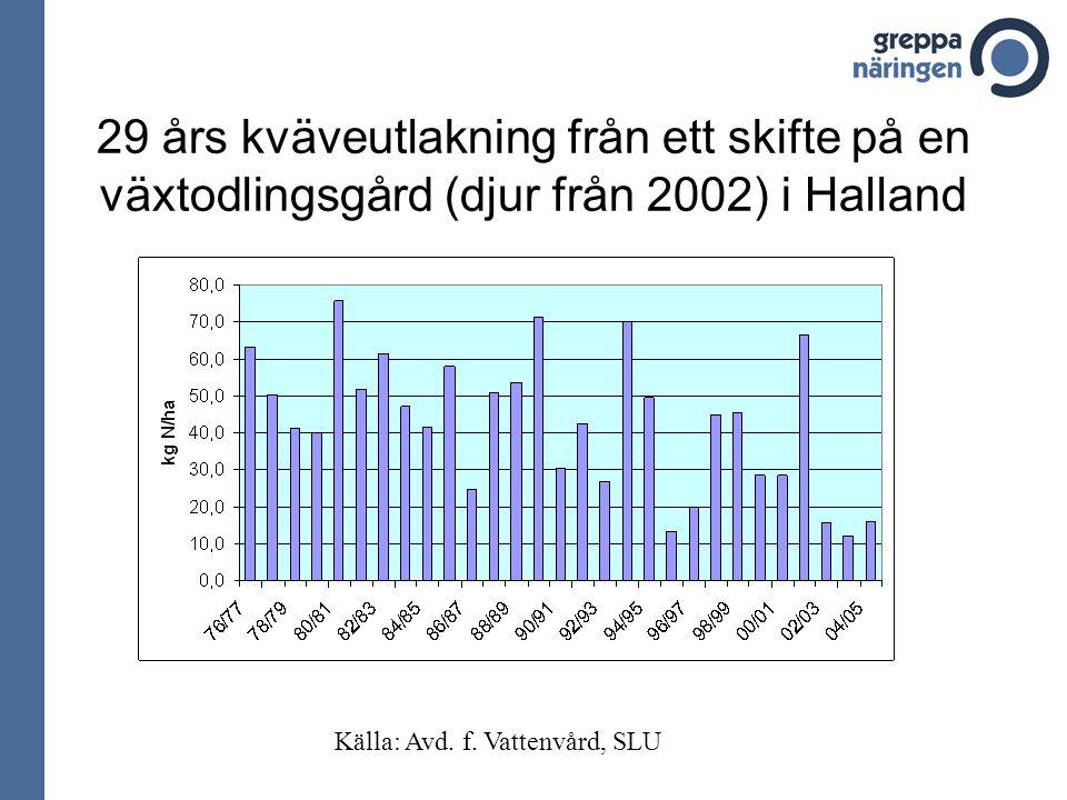 29 års kväveutlakning från ett skifte på en växtodlingsgård (djur från 2002) i Halland Källa: Avd.
