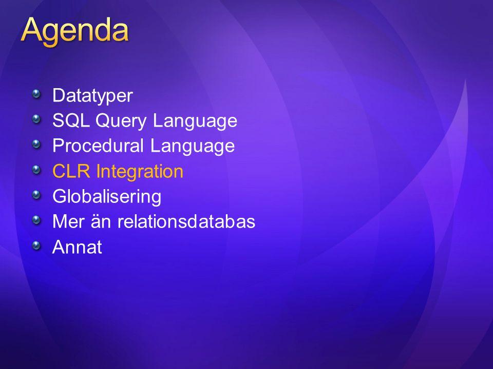 Datatyper SQL Query Language Procedural Language CLR Integration Globalisering Mer än relationsdatabas Annat