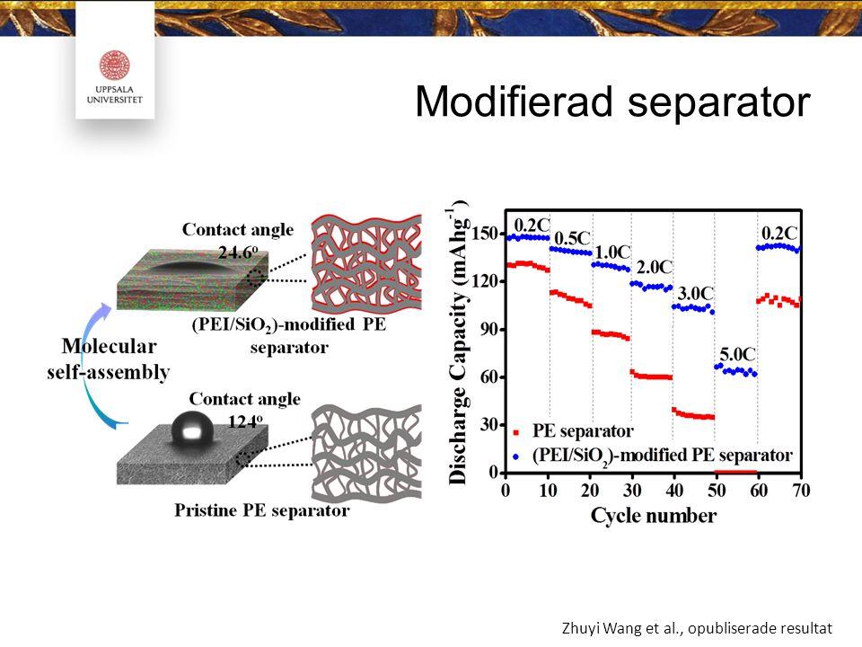 Modifierad separator Zhuyi Wang et al., opubliserade resultat