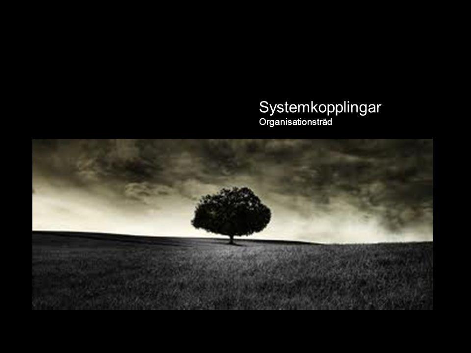 Systemkopplingar System Systemkopplingar Organisationsträd