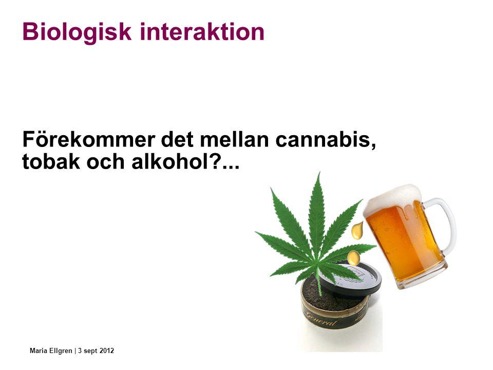 Biologisk interaktion Förekommer det mellan cannabis, tobak och alkohol?... Maria Ellgren | 3 sept 2012
