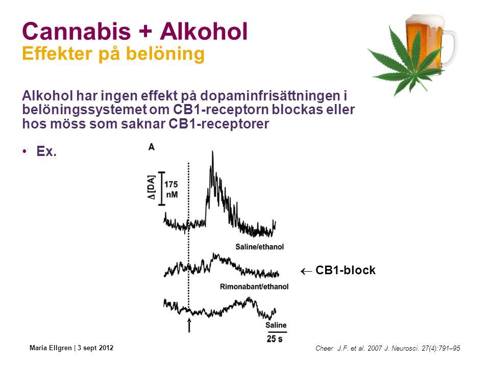 Cannabis + Alkohol Alkohol har ingen effekt på dopaminfrisättningen i belöningssystemet om CB1-receptorn blockas eller hos möss som saknar CB1-recepto