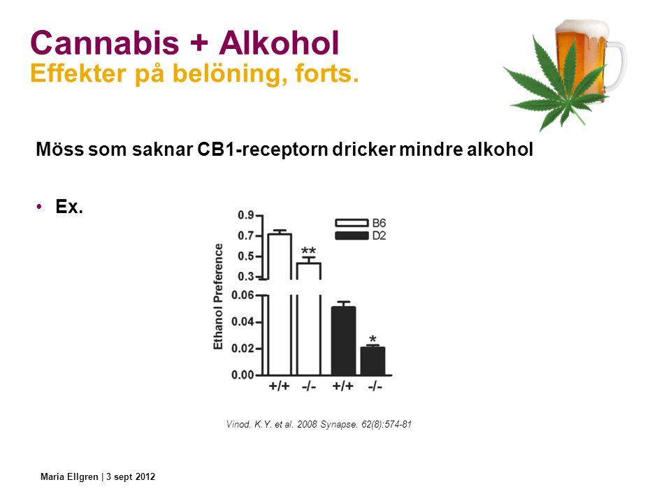 Cannabis + Alkohol Möss som saknar CB1-receptorn dricker mindre alkohol Ex. Effekter på belöning, forts. Vinod. K.Y. et al. 2008 Synapse. 62(8):574-81