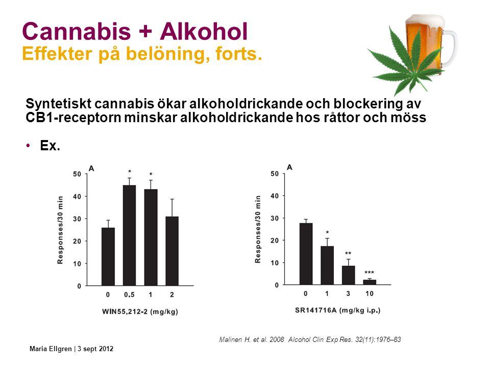 Cannabis + Alkohol Syntetiskt cannabis ökar alkoholdrickande och blockering av CB1-receptorn minskar alkoholdrickande hos råttor och möss Ex. Effekter