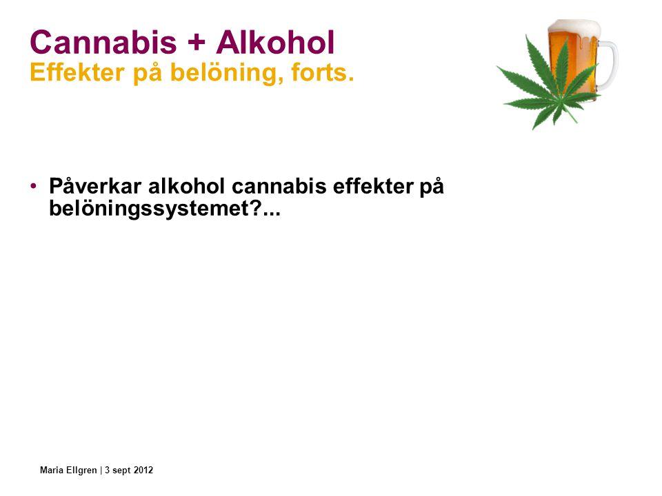 Cannabis + Alkohol Påverkar alkohol cannabis effekter på belöningssystemet?... Effekter på belöning, forts. Maria Ellgren | 3 sept 2012